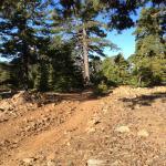 Bilde fra Mount Olympus
