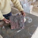 Photo of Macro Fossiles Kasbah