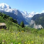 A view of the valley, taken just outside Wengen