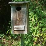 One of many birdhouses in the park