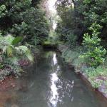 vista del canale verso la Peschiera vecchia