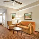 Hilton Garden Inn Houston Energy Corridor Foto