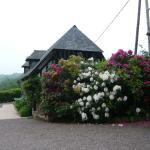 Vue sur la maison d'hôtes et ses magnifiques fleurs