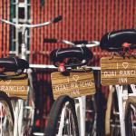 hotel rental bikes