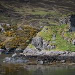 The nearby Strome Castle ruins