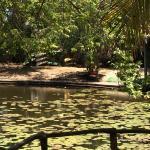 Bacab Eco Park Foto
