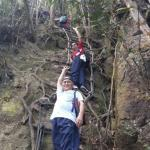 Use rope ladder