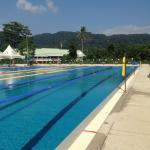 Tuesday Trip to an Olympic size pool and gym
