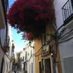 Foto de Hotel-Apartamentos Puerta de Aduares