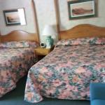 Foto de Colonel Williams Lake George Motel and Resort