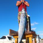 my second wahoo ever