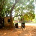 Photo of Naturellement Garden Cafe