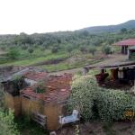view on the toscane farm