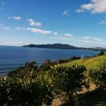 Doubtless Bay Villas Foto