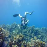 Photo of Island Diving Center