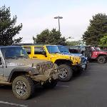 Parking lot full of Jeeps.