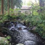 stream by path to the cabins