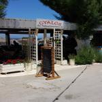 """Taverna """"O Gyalos"""", Kalyves Beach, Creta, giugno 2016"""