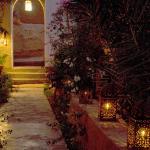 Le jardin la nuit