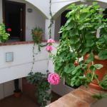 Jardines de Luz Hotel Foto