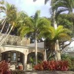Montpelier Plantation & Beach Photo
