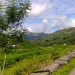 views on the way up to The Langdale