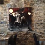 Bull on the wall~