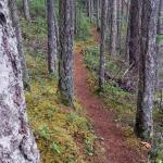 Mount Geoffrey Escarpment Provincial Park