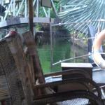 View inside the boat used during the ride