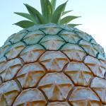 Big Pineapple-billede