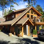 Black Bear Guesthouse Foto