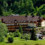 Schwarzwaldhotel Tanne Tonbach Restaurant