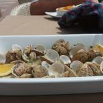 My wife's plate of clams