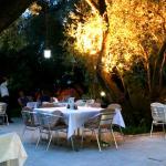 Foto de Hotel Oliva