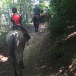 Foto de Nantahala Village Riding Stable