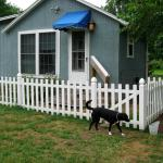 Lazy L Dog Friendly -- dog play area (fenced in yard)