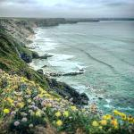 Lovely stay, beautiful area, great location for travelling around Cornwall, 1 hour from St Ives