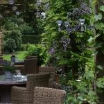 Beautiful outside terrace with wisteria and discrete candlelighting