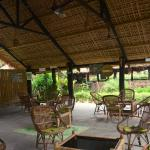 Nameri Eco Camp Image