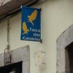 Tasca Dos Canarios Amarelos Foto