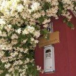Foto de Antica Villa Graziella