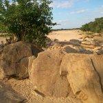 "rock along seasonal rivers ""korongo"""
