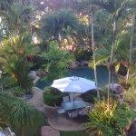 Melaleuca Resort Foto