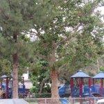 Echo Park Foto