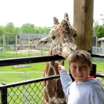 NEW Zoo & Adventure Park Εικόνα