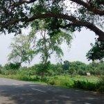 The road to Bethuadahari from Kolkata.