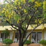 Foto de Villa Tropico (Cameleon Villa Jibacoa)