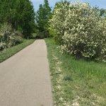 The Leelanau Trail