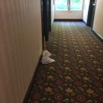 Toilet plunger left in hall for three days