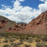 Calico Basin Red Spring
